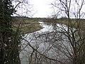 River Wye at Lechmere's Ley - geograph.org.uk - 373663.jpg