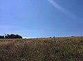 Rock-cornwall-england-tobefree-20150715-152723.jpg