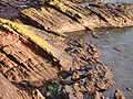 Rock Strata, south end of Goodrington Beach - geograph.org.uk - 361406.jpg