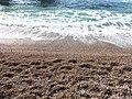 Rock beach a.jpg