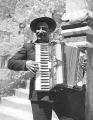 Rom abruzzese suona fisarmonica.png