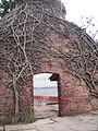 Ross Island Andaman 4140026.JPG