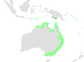 Rufous Fantail distribution.png