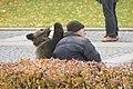 Russia (5532303444).jpg