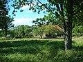 Sämi-Tagaküla - panoramio - Aulo Aasmaa (3).jpg