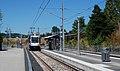 SE Flavel Street MAX station with SB train.jpg