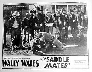 Wally Wales American actor (1895–1980)