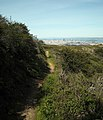 San Bruno Mountain Park (4441821303).jpg