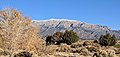 Sandia Crest with snow.jpg