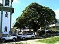 Santa Bárbara, MG - panoramio (1).jpg