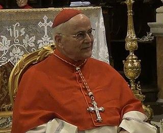 José Saraiva Martins Catholic cardinal