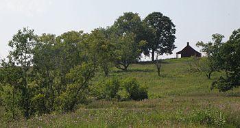 Neilson Farm on Bemis Heights