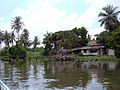 Scenery alongside Bangkok khlong 5.JPG