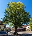 Schweigen-Rechtenbach Hauptstraße 24/25 (bei) 005 2017 08 07.jpg
