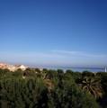 Sea-algeria2.png