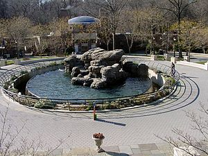 Prospect Park Zoo - The Sea Lion Pool in the center court of Prospect Park Zoo