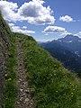 Sentiero sul Col di Lana.jpg