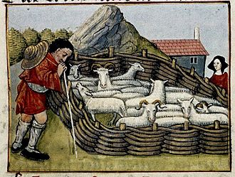 Animal husbandry - Shepherd with sheep in woven hurdle pen. Medieval France. 15th century, MS Douce 195
