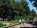 Shevchenko Park in Ivano-Frankivsk.jpg