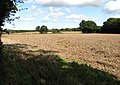 Shortcut across field - geograph.org.uk - 986280.jpg