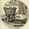Silenus Alcibiadis, sive, Proteus - vitae humanae ideam, emblemate trifariàm variato, oculis subijciens (1618) (14725181456).jpg