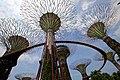 Singapore, Gardens by the bay - panoramio (6).jpg