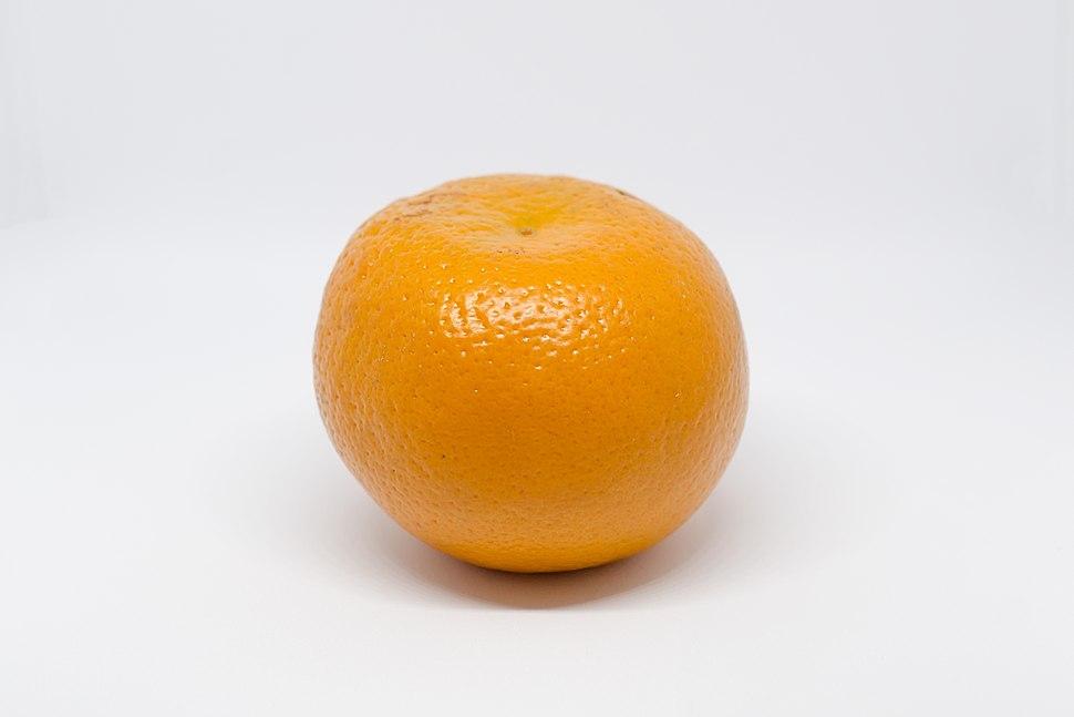 Single Orange (Fruit)