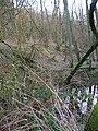 Site of Roman Bloomery, Beauport Park - geograph.org.uk - 344645.jpg