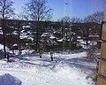 Skats uz Pārogri no Lazdu gatves - panoramio - Romāns Kolduns.jpg