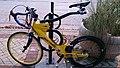 Softride suspension bicycle.jpg
