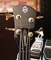 Spector Bass headstock.jpg