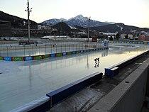 Speed skating 2012 olympics.JPG