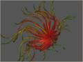 Spherical Kite.png