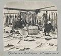 Spilorna borttagas, Mollösund . Två kvinnor och en pojke tar ner fisk som hängt på tork - Nordiska museet - NMA.0052189.jpg