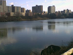 Starrett City, seen across Fresh Creek Basin