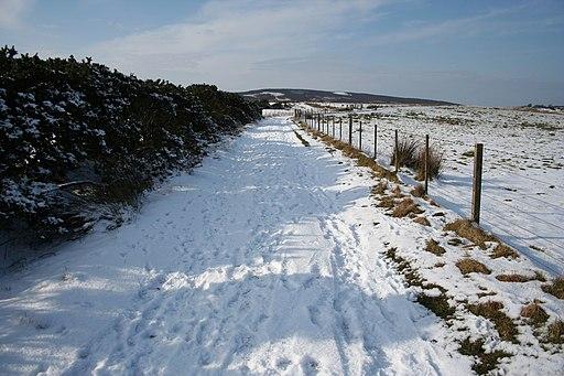 St Cuthbert's Way near Fawcet Hill - geograph.org.uk - 1750801