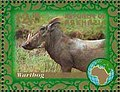 Stamp of Abkhazia - 2007 - Colnect 1010920 - Warthog.jpeg