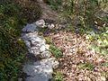 Steps down to the Fairy Glen - geograph.org.uk - 1375142.jpg