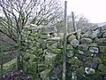 Stile Haylot Farm - geograph.org.uk - 99209.jpg