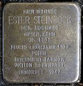 Stumbling stone for Ester Steinbock (Thieboldsgasse 6)