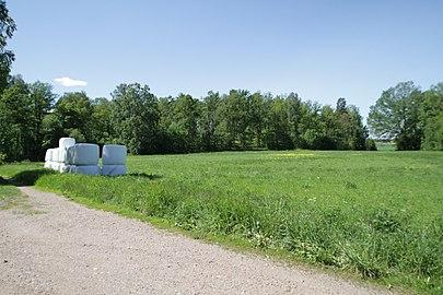 Strömsholm.jpg