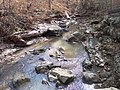 Stream Potts Branch Trail Umstead SP 5542 (3346435381).jpg