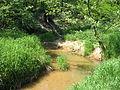 Sumina-river.jpg