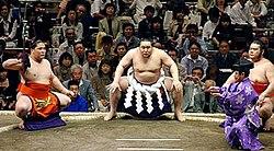 Sumo-Güreşi