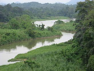 Perak - Perak River