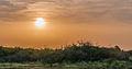 Sunset at Las Guevaras, Margarita Island.jpg