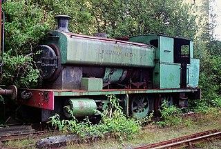 Swansea Vale Railway British railway company (1860–1874)