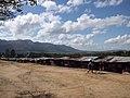 Swaziland Arts & Craft Market (6899428684) (10).jpg