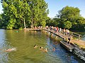 Swimmers in the River Thames at Port Meadow, Oxford, UK.jpg