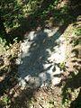 Tallahassee FL Blackwood-Harwood Cemetery grave04.jpg